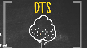 DTS Seed Project Evaluation