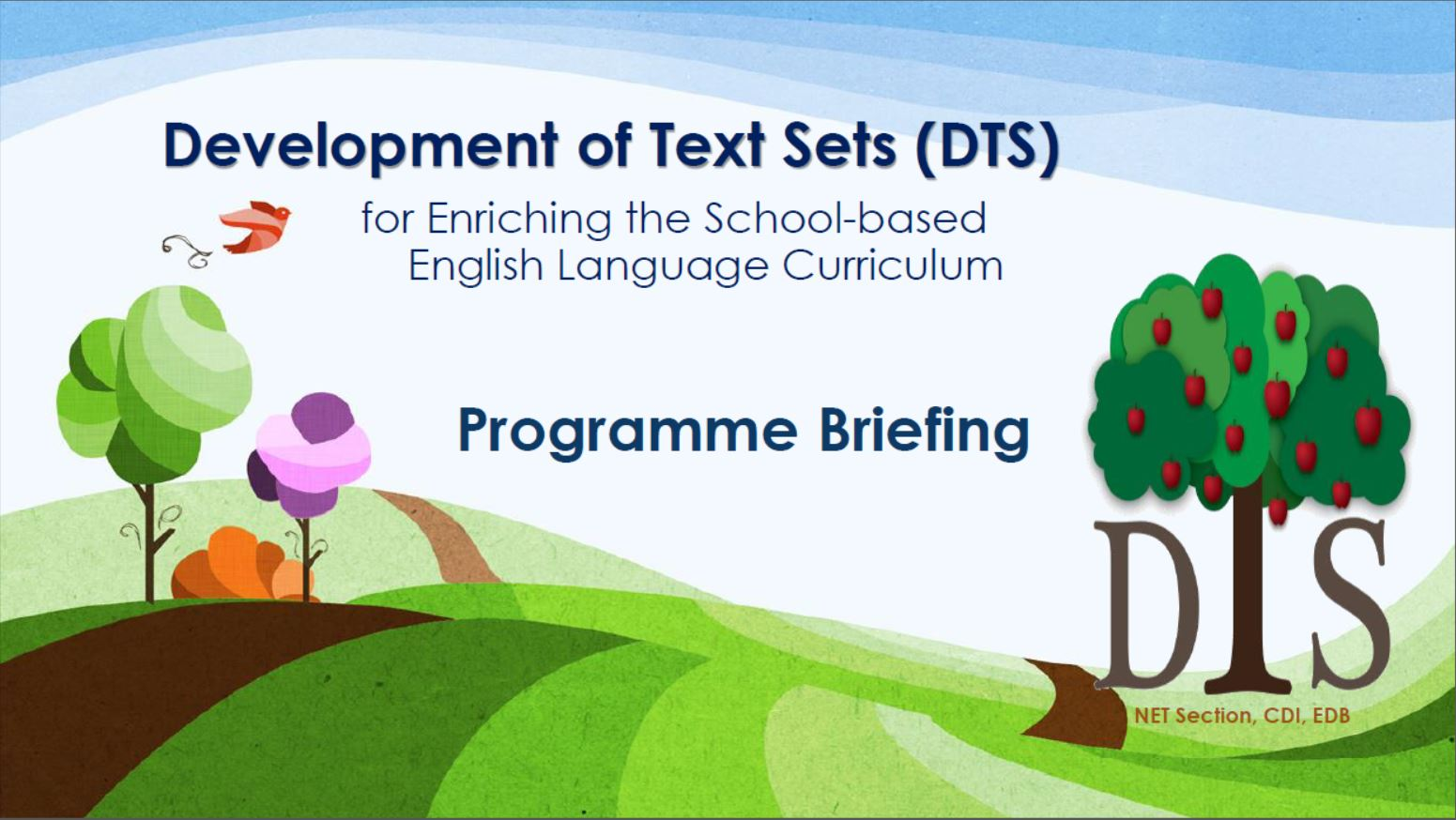 DTS Programme Briefing [PDF]