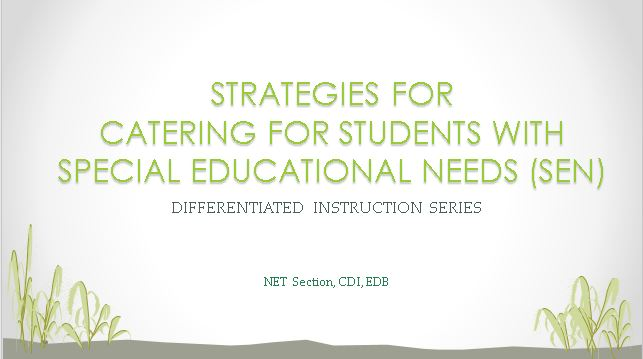 Strategies for Catering for Students with Special Educational Needs (SEN)